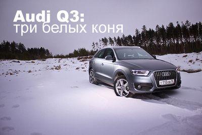 Audi q3: три белых коня
