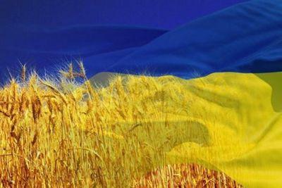 Кризис и санкции опустят авторынок