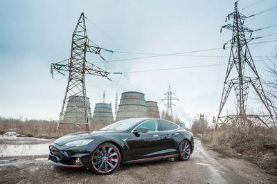 Tesla s elizabeta от московской мастерской larte design