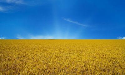 Украинский kia ceed оценили в 155 000 гривен