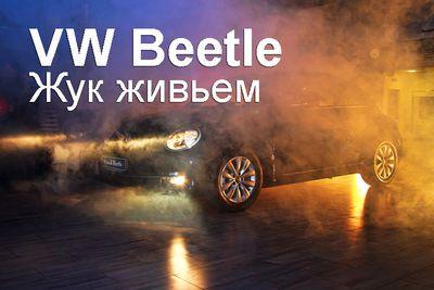 Vw beetle. жук живьем